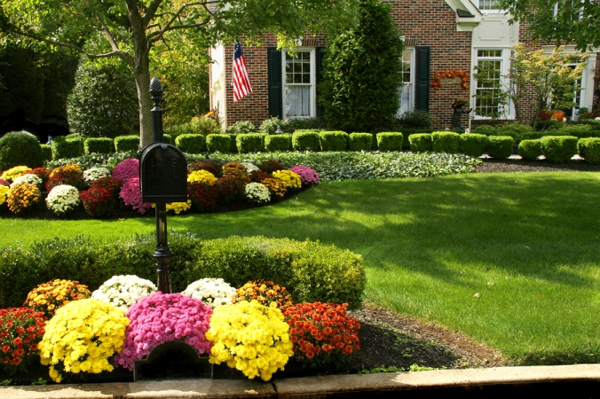 Traditional brick colonial dressed up for fall with colorful mums