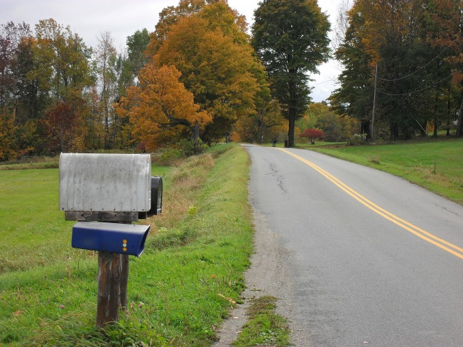 country road with mailbox in foreground, trees in background, autumn day