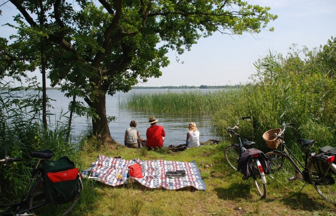 Family fishing at creek with backs to camera, blanket and picnic basket with bikes in foreground